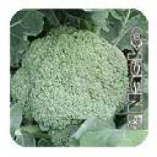 Капуста брокколи Трубадур /2 500 штук семян/